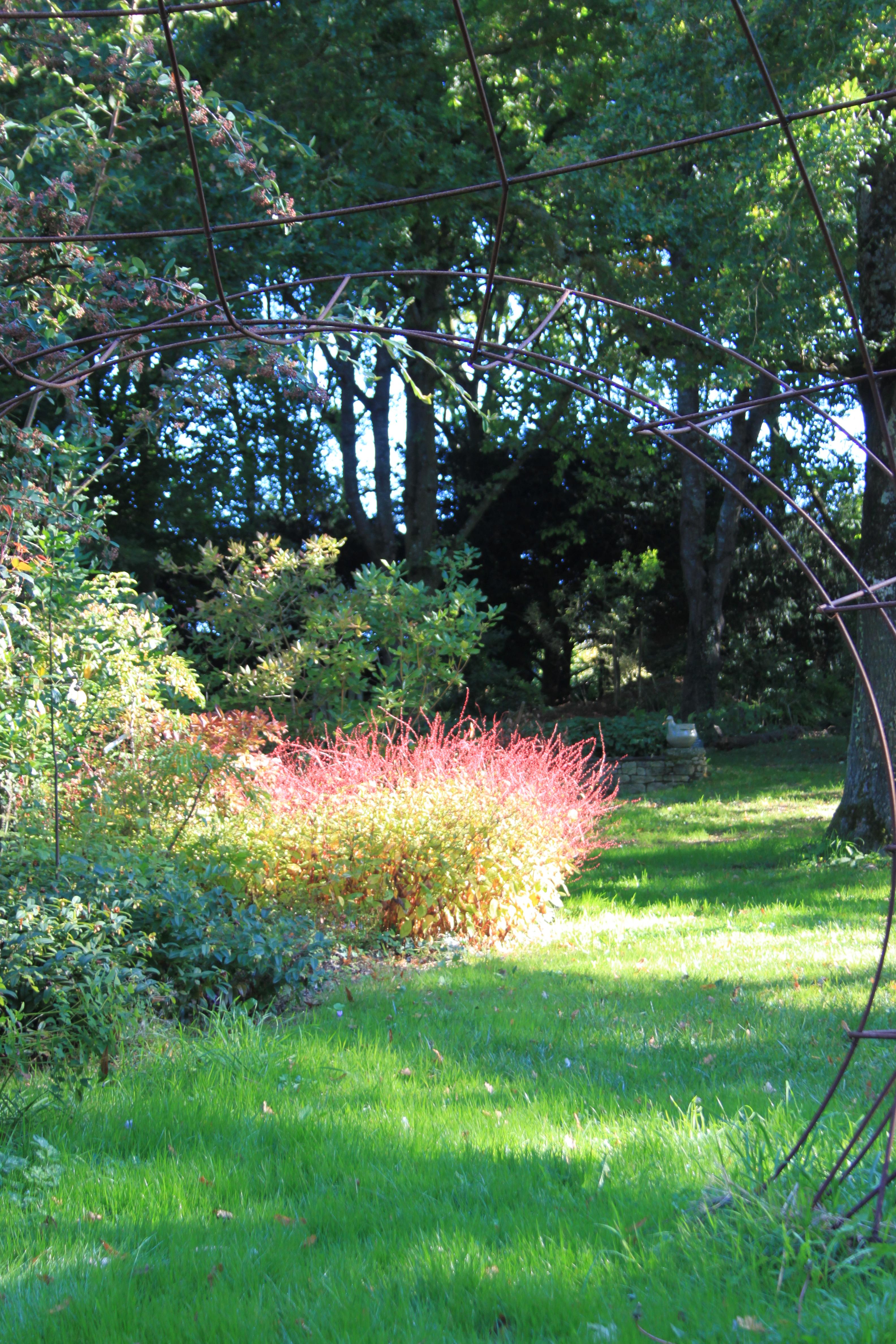 Blog au jardin de la levrette jour apr s jour un for Agrementer un jardin